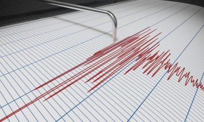 Seismograf sebagai ilustrasi adanya peningkatan gempa di Indonesia