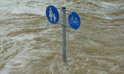 Ilustrasi Banjir di Kalimatan Selatan. Presiden melakukan peninjauan ke area terdampak banjir.